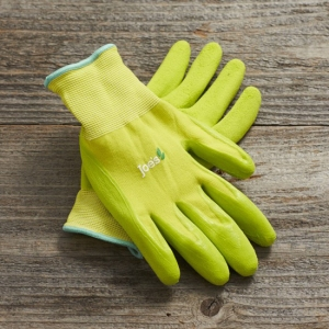 """""""everything gloves"""" from Williams Sonoma"""